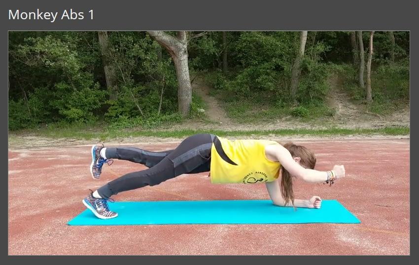 Mitglieder-Bereich Alternierend Plank