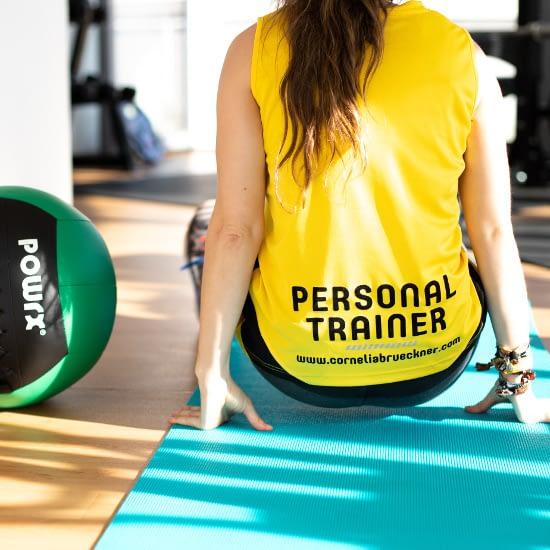 Personal Training Wallball Russian Twists Kontakt
